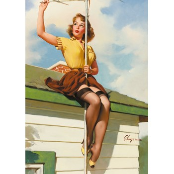 Pin Up. Antenna