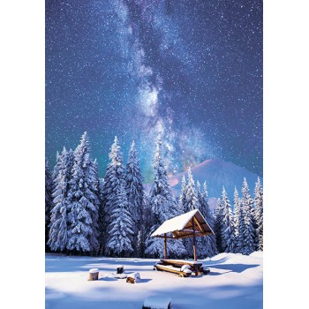 Hut in the forest and the starry sky