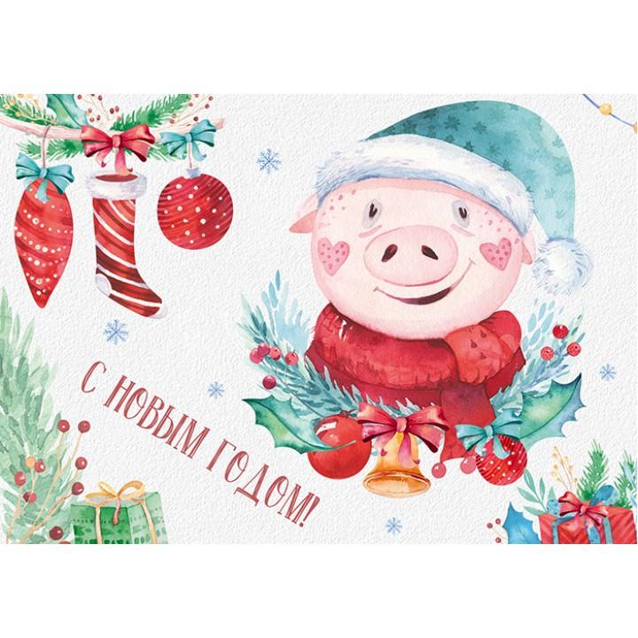 Happy New Year! Piggy