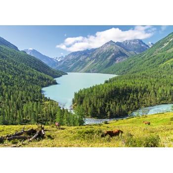 Kucherla lake, Altay