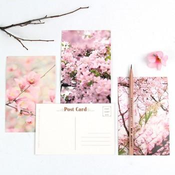 Blossom (30 postcards, 14.3*9.3 сm)