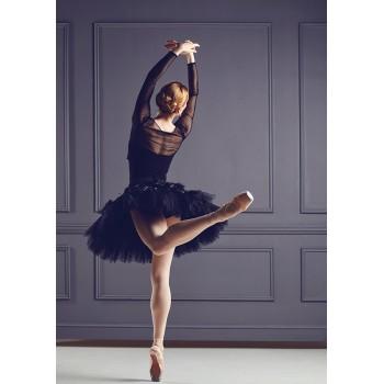 Ballet fairy