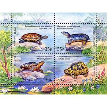 Fauna of Russia. Turtles