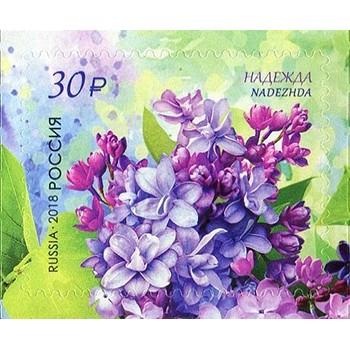 Flora of Russia. Lilac Nadezhda