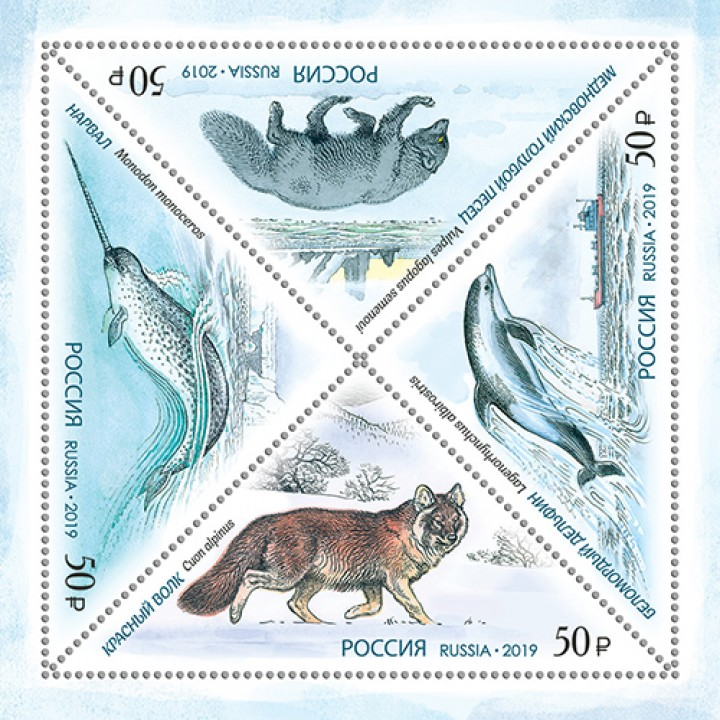 Red Book. Red wolf, narwhal, Mednovsky blue fox, white-faced dolphin