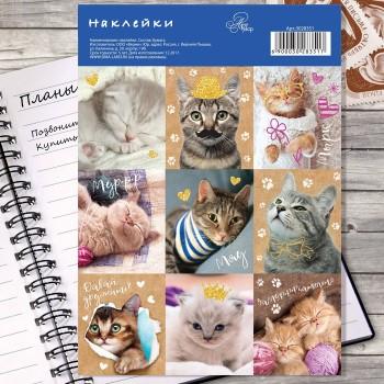 "Stickers ""Cute cats"" (11 × 16 cm)"
