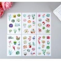"Stickers ""Succulents"", 6 sheets (10 × 15 cm)"
