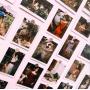 John William Waterhouse (30 postcards, 14.2*10.2 сm)