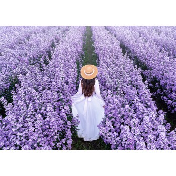Girl on a flower field