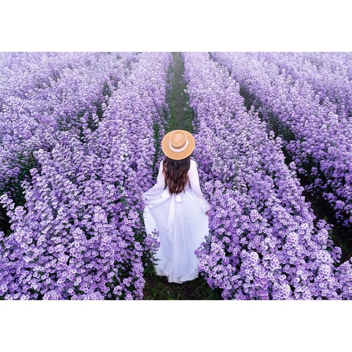 Girl on a flower field