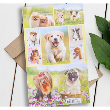 """Stickers """"Dogs with flowers"""" (11 × 16 cm)"""
