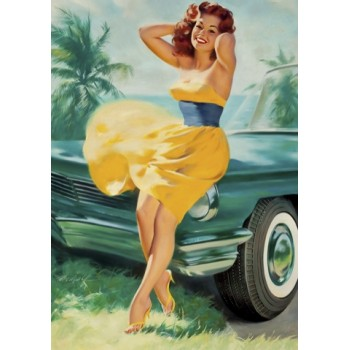 Pin Up. Summer.